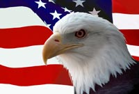 American Flag and Bald Eagle freight broker emblem